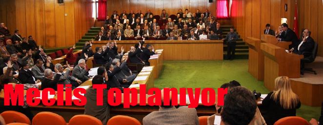 belediye meclisi (15)
