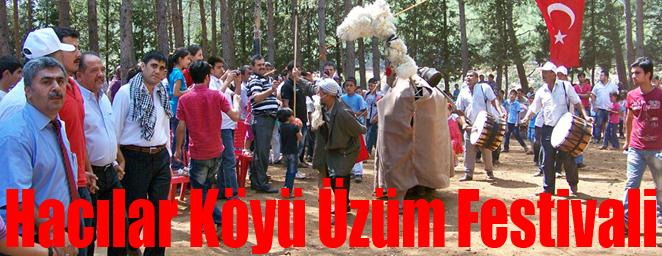 üzüm festivali