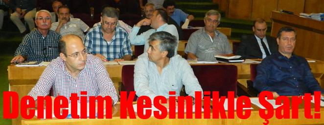 belediye meclisi (29)