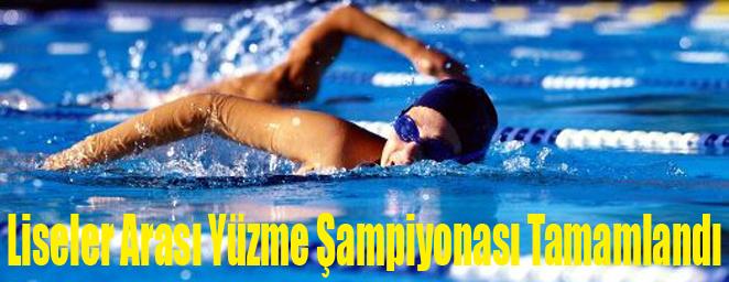 yüzme yarışları2