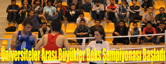 boks turnuva2