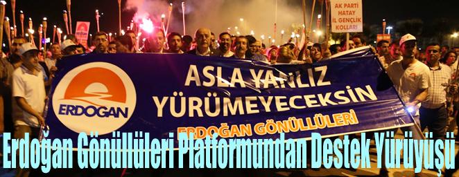erdoğan destek1