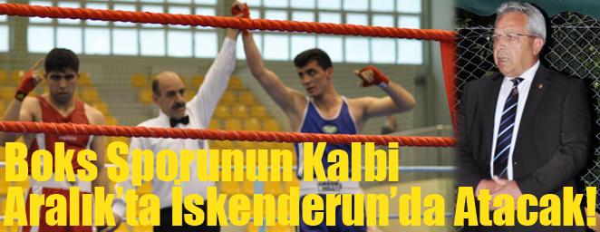boks şampiyonası1