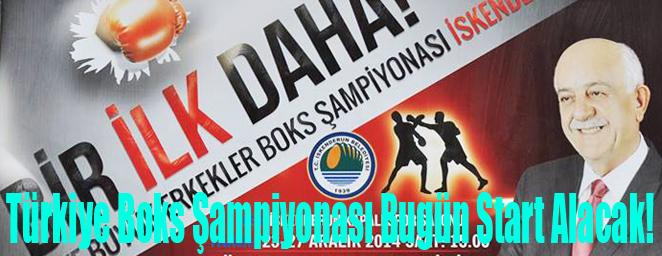 boks şampiyonası11