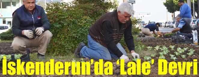 bld-lale devri1